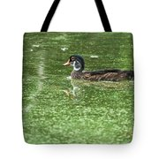 Juvenile Male Wood Duck Tote Bag