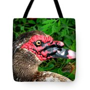 Juvenile Muscovy Duck Tote Bag