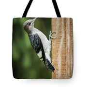 Juvenile Red Headed Woodpecker Tote Bag