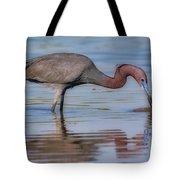 Juvenile Reddish Egret Tote Bag