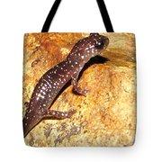 Juvenile Slimy Salamander Tote Bag