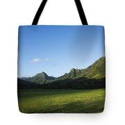 Kaaawa Valley Tote Bag by Dana Edmunds - Printscapes