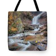 Kaaterskill Falls Autumn Portrait Tote Bag