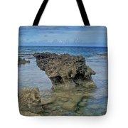 Kaena Point  7868 Tote Bag