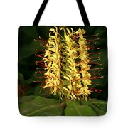 Kahili Ginger Tote Bag