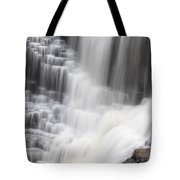 Kakabeka Falls Tote Bag