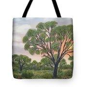 Kalahari Tote Bag
