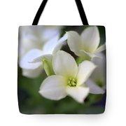 Kalanchoe Tote Bag