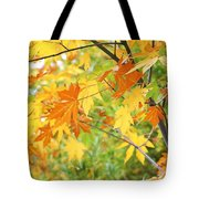 Kaleidoscope Of Color Tote Bag