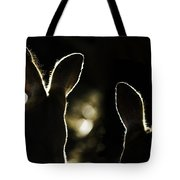 Kangaroos Backlit Tote Bag