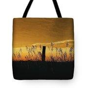 Kansas Countryside Tote Bag
