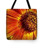 Kansas Sunflower Tote Bag