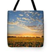 Kansas Sunflowers At Sunset Tote Bag