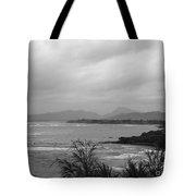 Kauai Coconut Coast Tote Bag