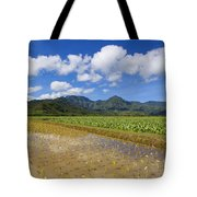 Kauai Wet Taro Farm Tote Bag