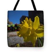 Kayak Launch Daffodil Cambridge Ma Tote Bag