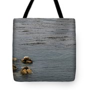 Kayakers And Seal Lions Tote Bag