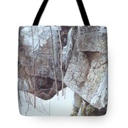 Kb Bateman Robert-silent Witness Robert Bateman Tote Bag