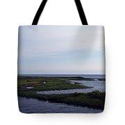 Keaton Beach Wetland Tote Bag