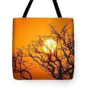 Keawe Tree At Sunset Tote Bag