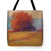Keene Valley Field Tote Bag