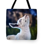 Keep Calm And Hold Your Head Up Tote Bag
