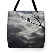 Keeping Above The Storm Tote Bag