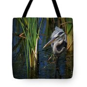 Keeping An Eye Out For Fish Tote Bag