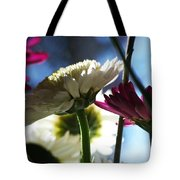 Keeping In The Sunlight... Tote Bag