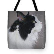 Keeps - Maine Coon Tote Bag