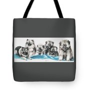 Keeshond Puppies Tote Bag