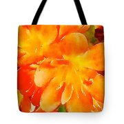 Kaffir Lily Blossoms Tote Bag