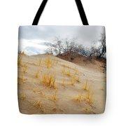 Kelso Dune Slopes Tote Bag