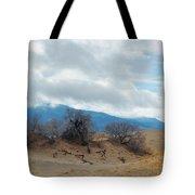 Kelso Dunes Winter Landscape Tote Bag