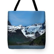 Kenai Fjords National Park Alaska Tote Bag
