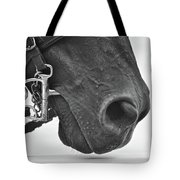Kentucky Boy Tote Bag