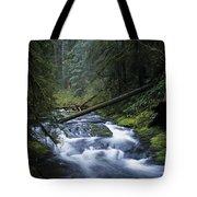 Kentucky Creek Tote Bag