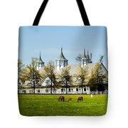 Revised Kentucky Horse Barn Hotel 2 Tote Bag