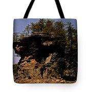 Kentucky Wonder Tote Bag