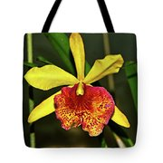 Keowee Newberry Orchid 001 Tote Bag