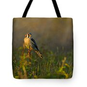 Kestrel In Meadow Tote Bag