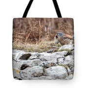 Kestrel With Prey Tote Bag