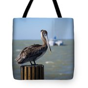 Key Largo Florida Pelican Yacht Tote Bag