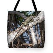 Key West Iguana In Mangrove 3 Tote Bag