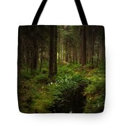 Keys In The Woods Tote Bag