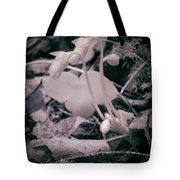 Kidneyworths Tote Bag