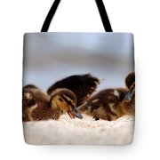 Kids Will Play Tote Bag