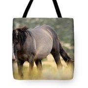 Kiger Stallion Tote Bag