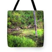 Kill Creek 8388 Tote Bag