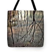 Kill Creek 8394 Tote Bag
